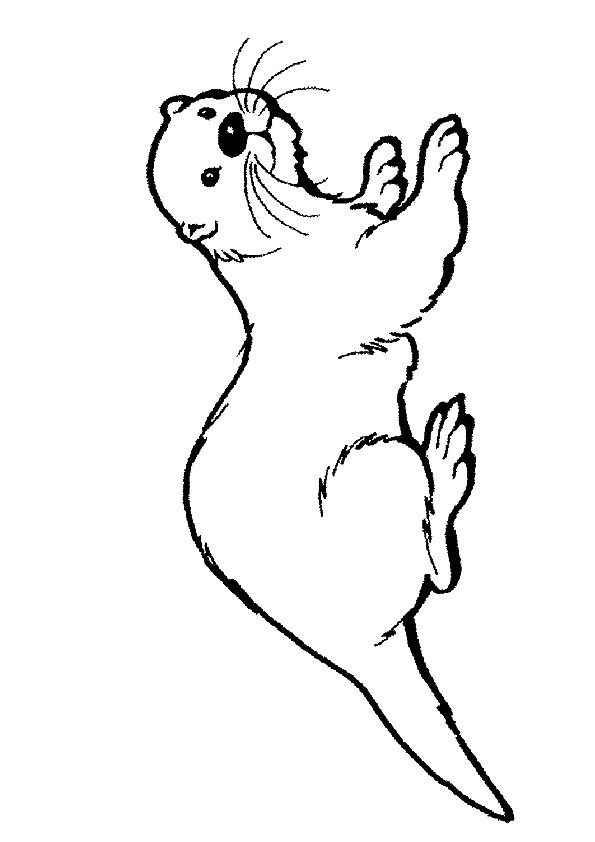 o is for otter coloring page otter coloring pages picture whitesbelfast for otter coloring is page o