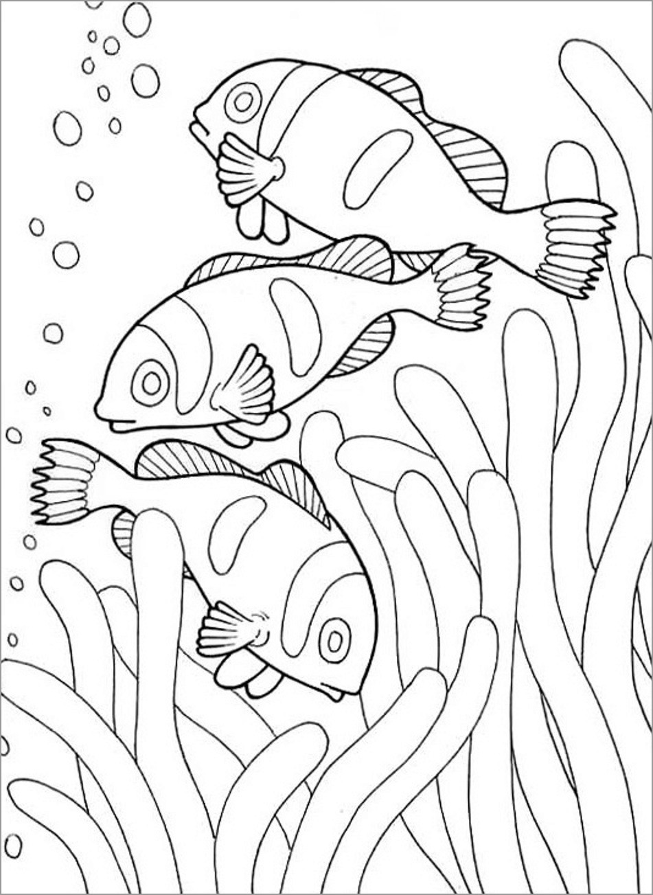 ocean animals printable coloring pages clownfish coloring pages coloringbay printable animals ocean coloring pages