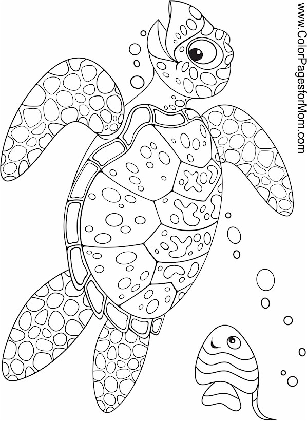 ocean animals printable coloring pages ocean coloring pages to download and print for free animals ocean printable pages coloring