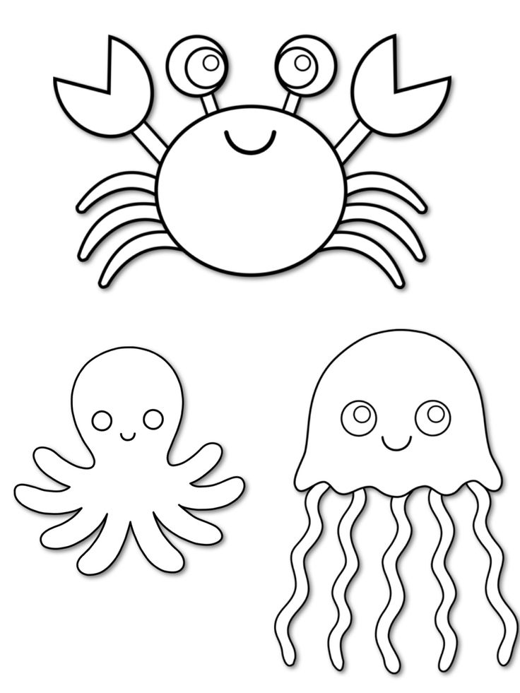 ocean animals printable coloring pages sea creatures coloring pages basic patternstemplates ocean pages animals printable coloring