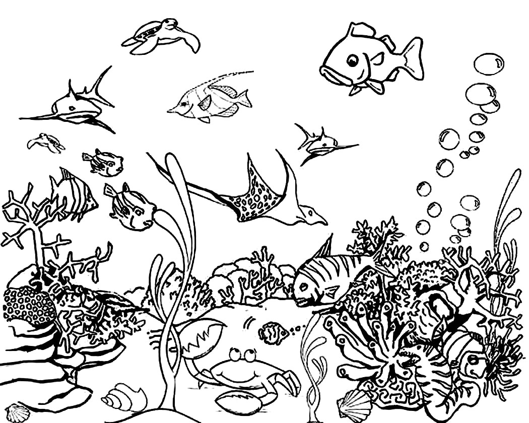 ocean coloring pages free printable ocean coloring pages for kids ocean pages coloring