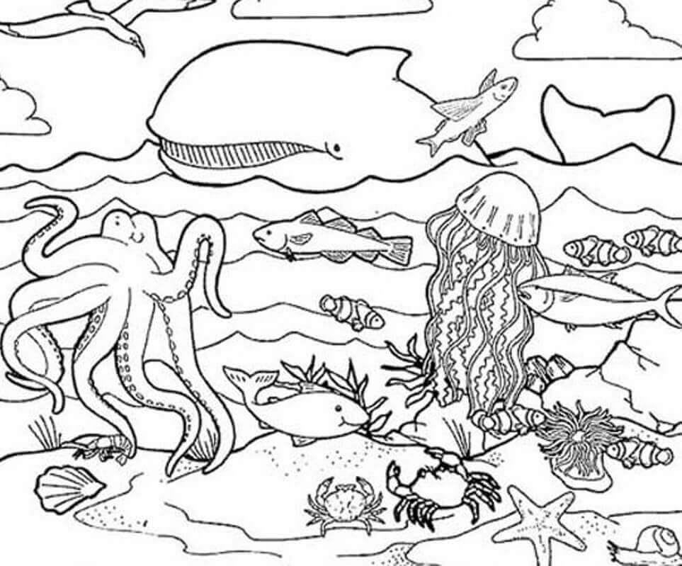 ocean coloring pages free printable ocean coloring pages under the sea ocean coloring pages 1 1