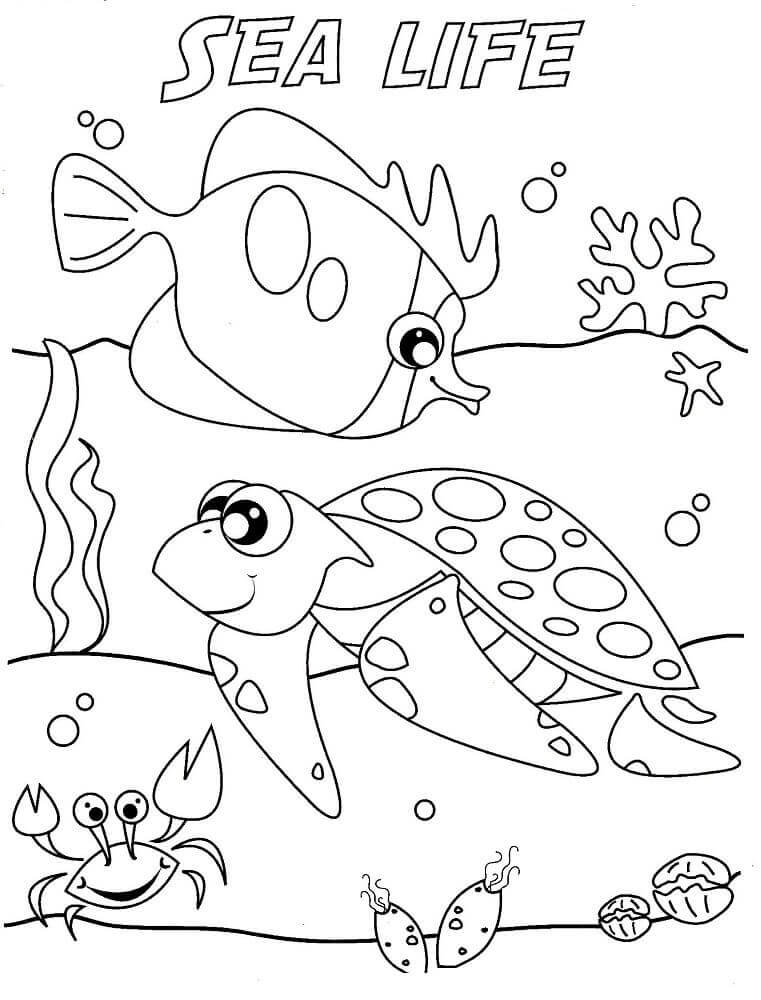 ocean coloring pages free printable ocean coloring pages under the sea pages ocean coloring