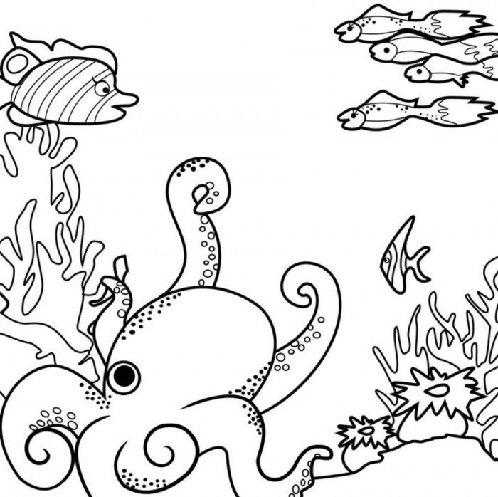 ocean coloring pages ocean coloring pages books 100 free and printable pages ocean coloring