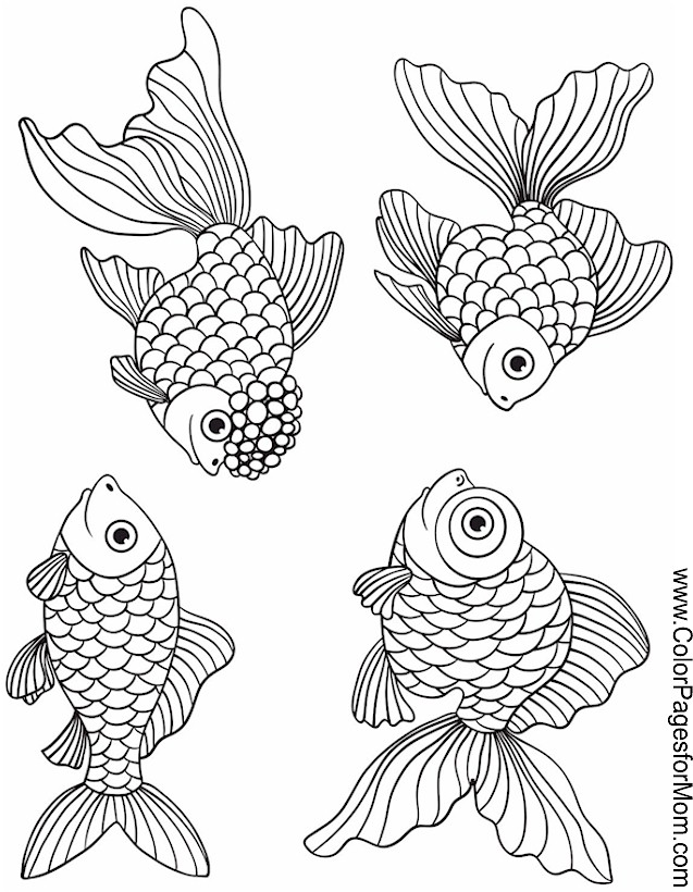 ocean coloring pages seascape ocean coloring page 47 coloring pages ocean