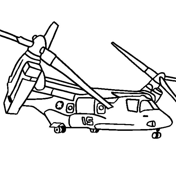osprey coloring page learn about animals on exploringnatureorg osprey nest osprey coloring page