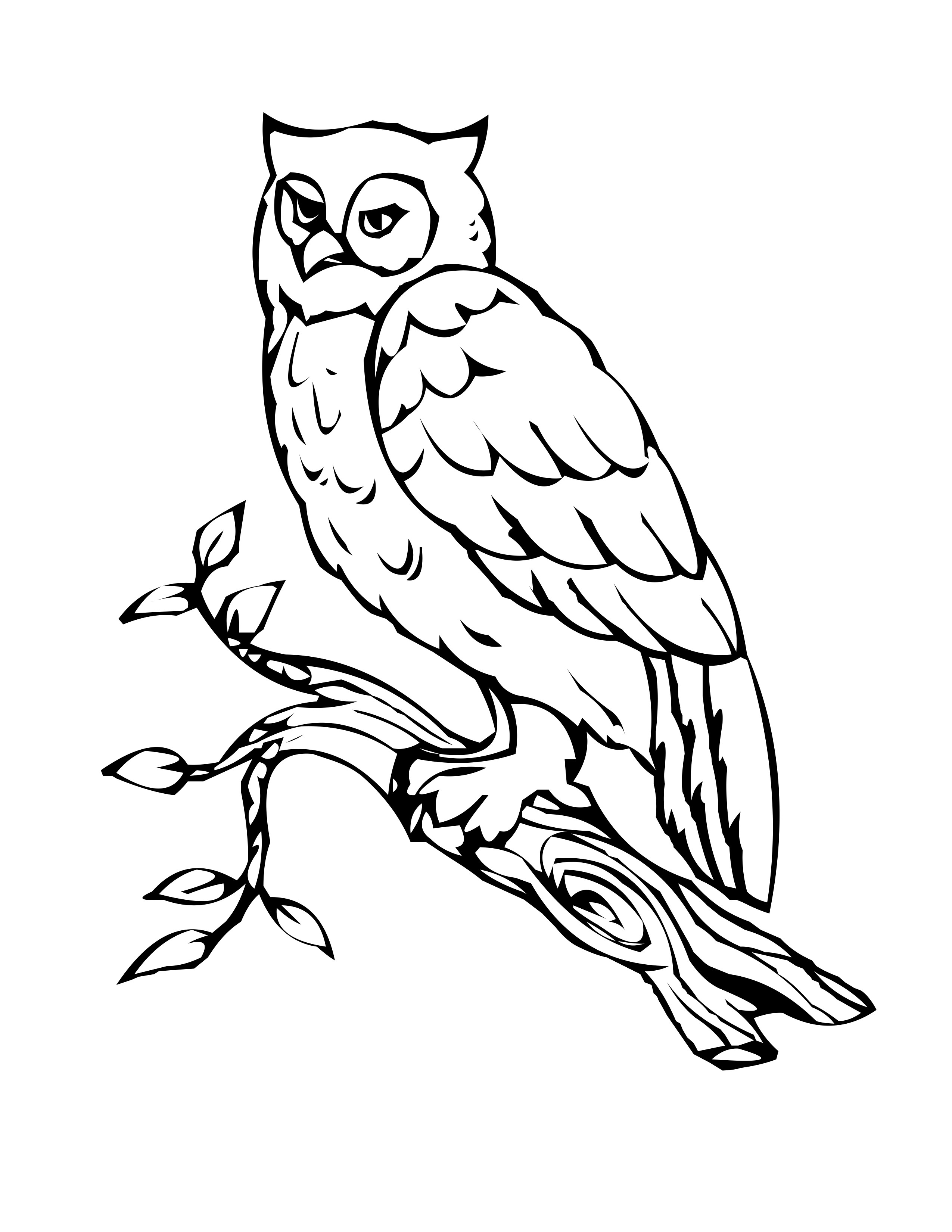 owl printable coloring pages owl coloring pages free printables tthe huns yellow owl pages coloring printable