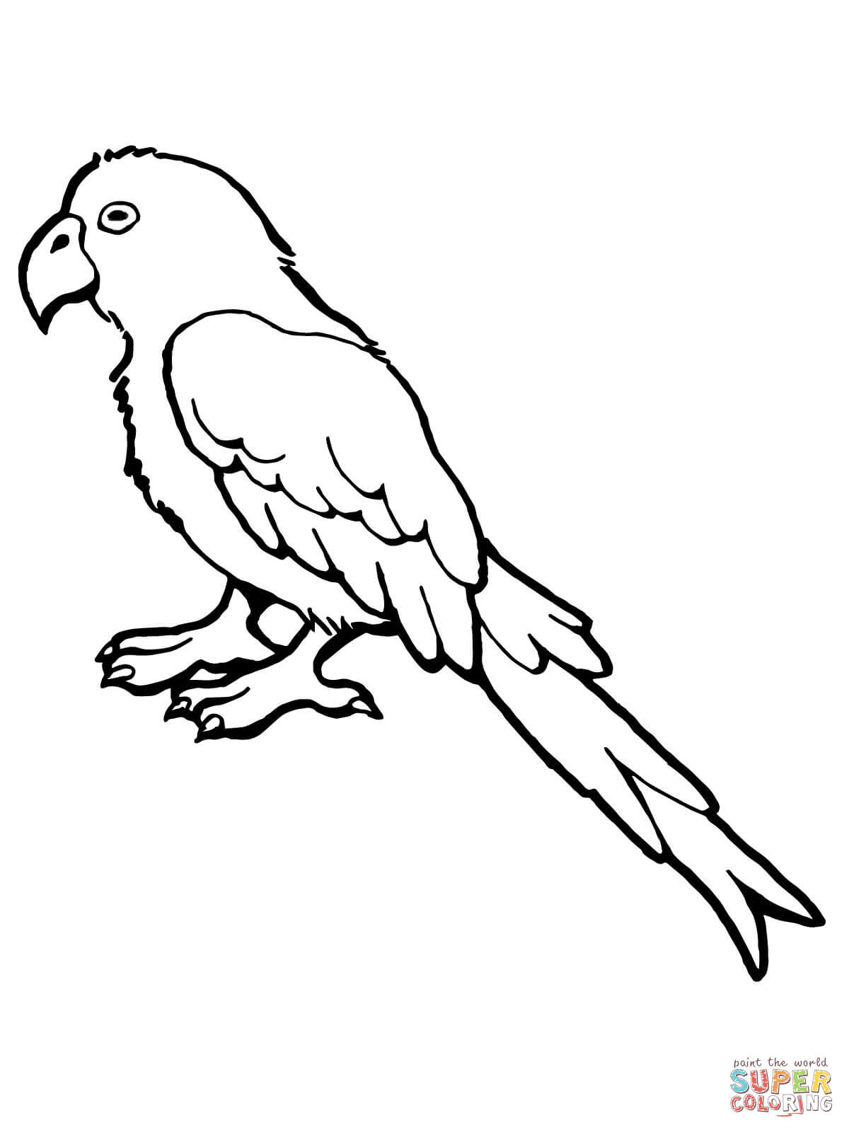 parrot outline bird outline drawing at getdrawings free download parrot outline