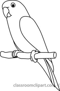 parrot outline parrot drawing outline at getdrawings free download outline parrot 1 3