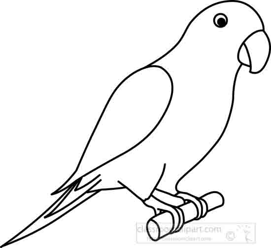 parrot outline parrot drawing outline at getdrawings free download outline parrot 1 4