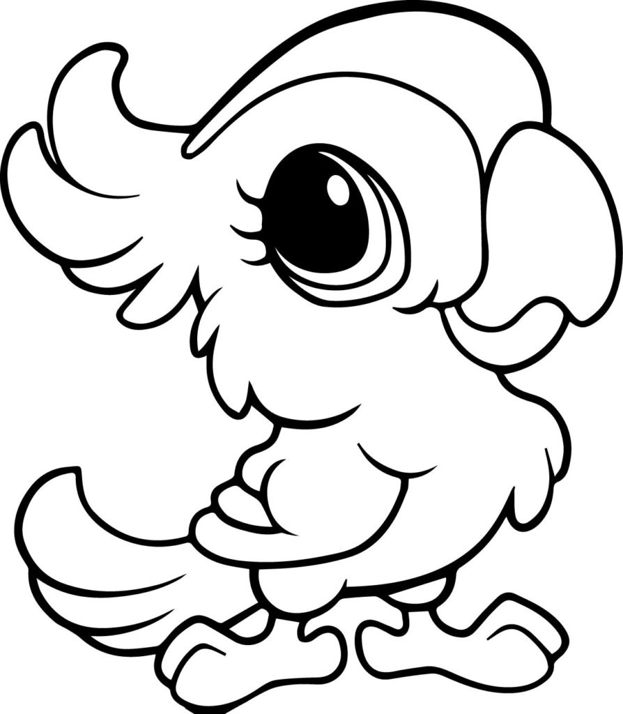 parrots pictures to colour free parrot and macaw coloring pages parrots colour pictures to