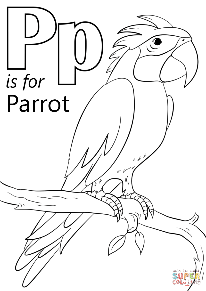 parrots pictures to colour free printable parrot coloring pages for kids parrots pictures colour to