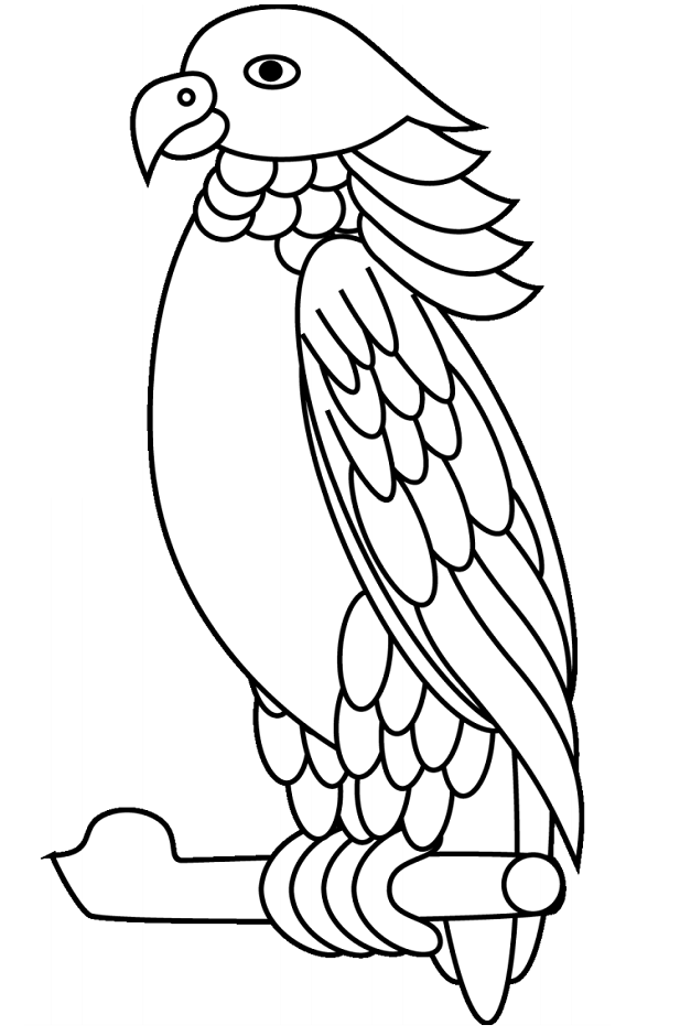 parrots pictures to colour parrot black and white clipart free download on clipartmag pictures colour parrots to