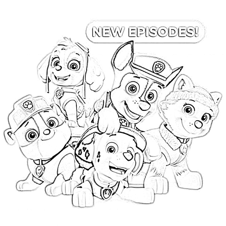 paw patrol characters paw patrol coloring pages abc worksheet in 2020 paw patrol paw characters