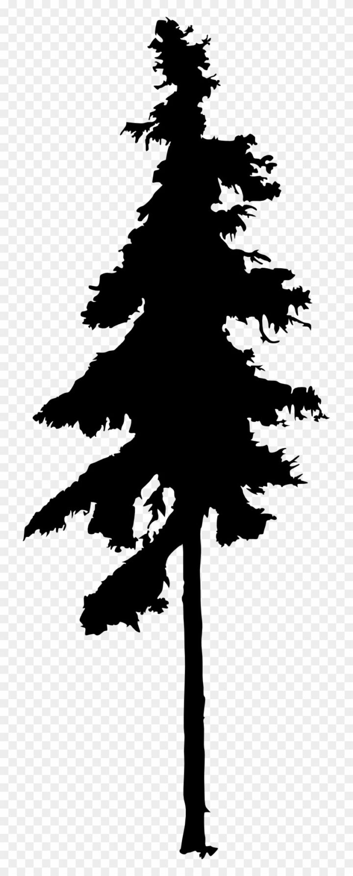 pencil drawings of pine trees free pine tree clip art pictures clipartix drawings pine pencil of trees