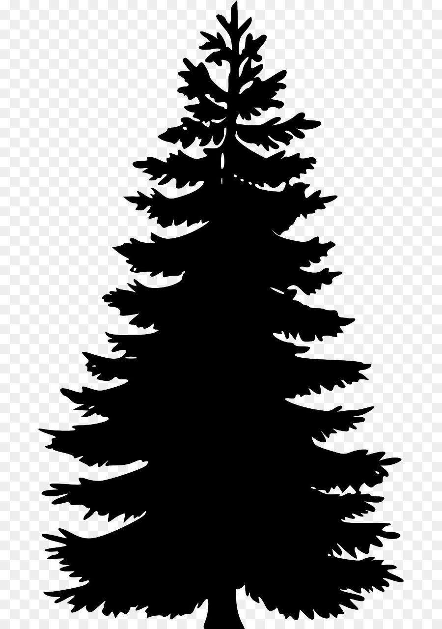 pencil drawings of pine trees pine tree clipart black and white free download on drawings pencil of pine trees