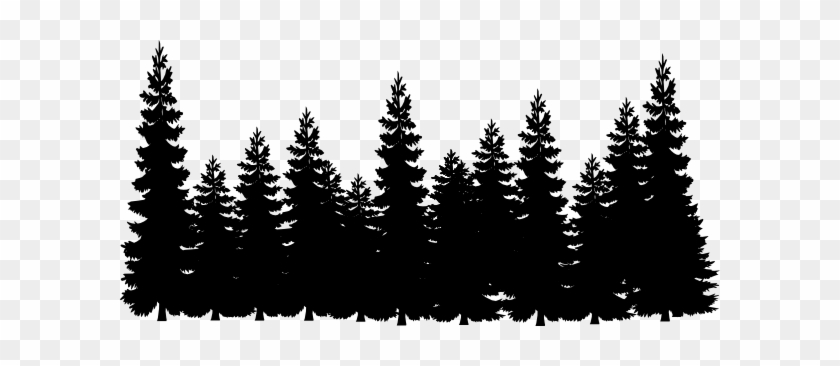 pencil drawings of pine trees shadows clipart pine tree pine trees clipart black and pine pencil of drawings trees