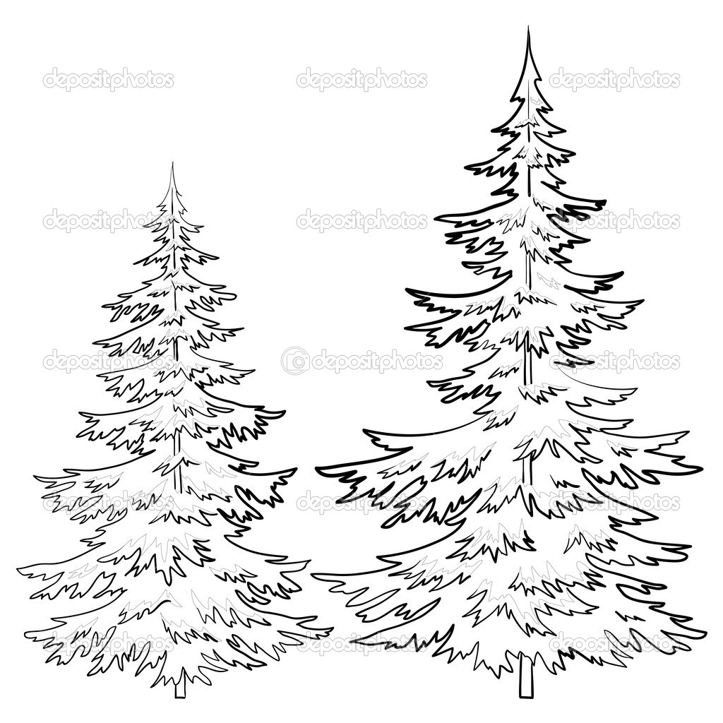 pencil drawings of pine trees vintage clip art and illustrations pine tree stock pencil of pine trees drawings