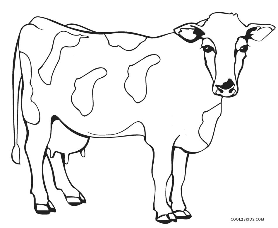 picture of a cow to colour cow 26 coloring page free printable coloring pages to colour picture of cow a