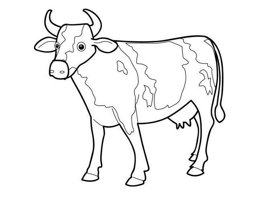 picture of a cow to colour printable drawing for kids to colour cow coloring pages colour of a cow picture to