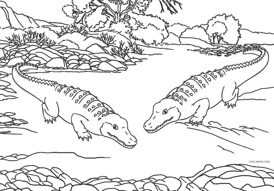 picture of a crocodile to colour coloring pages of baby crocodile coloring home crocodile picture of to colour a