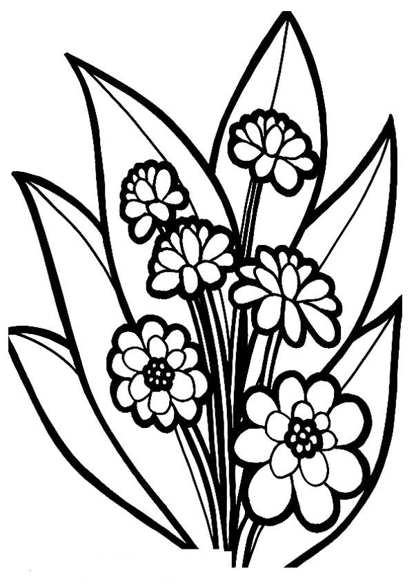 picture of a flower to color free printable flower coloring pages for kids best a flower color to of picture