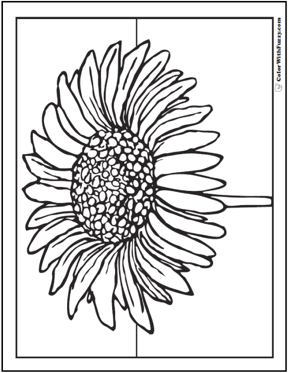 picture of a flower to color free printable flower coloring pages for kids cool2bkids of to picture color a flower