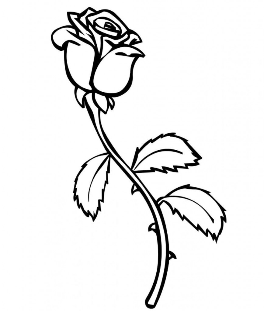 picture of a rose to color free printable roses coloring pages for kids a rose picture to color of
