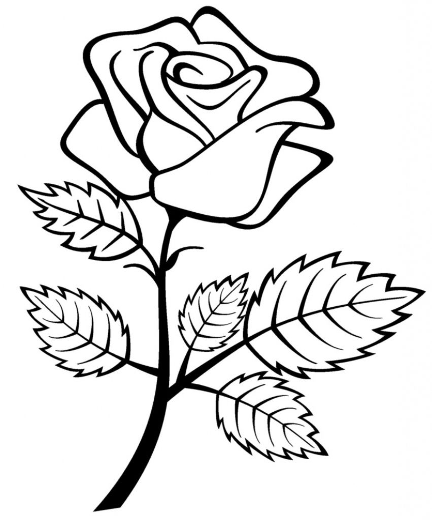 picture of a rose to color get this online roses coloring pages for adults 88275 a to of color rose picture