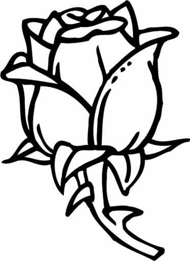 picture of a rose to color printable rose coloring pages for kids picture rose of color to a