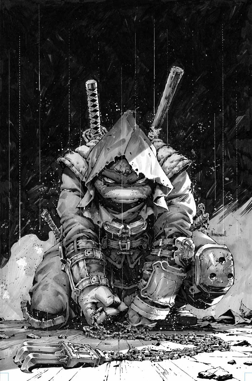 picture of ninja turtle 1000 images about teenage mutant ninja turtles turtle ninja of turtle picture