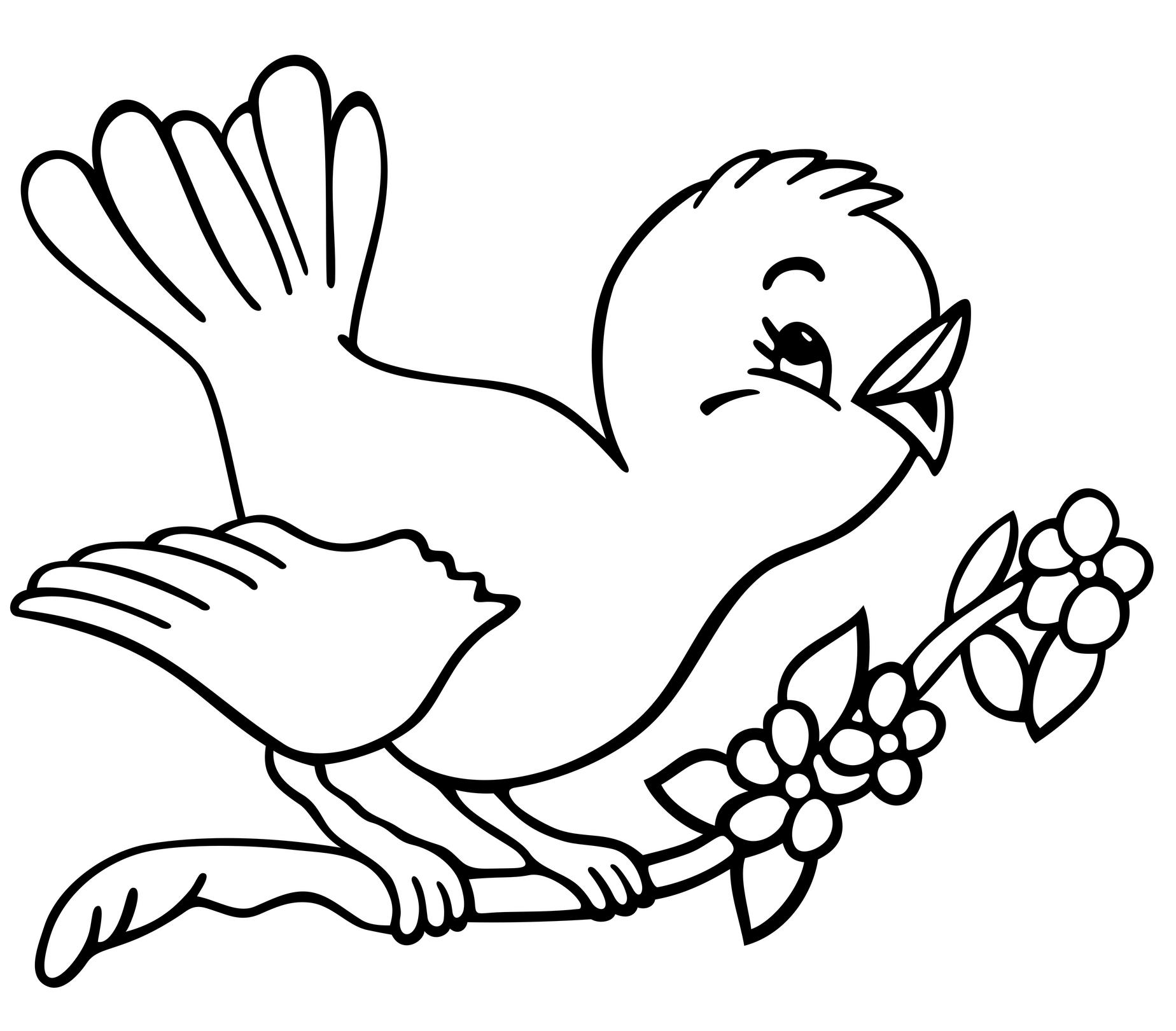 pictures of birds to color hummingbird coloring pages to download and print for free birds color pictures to of