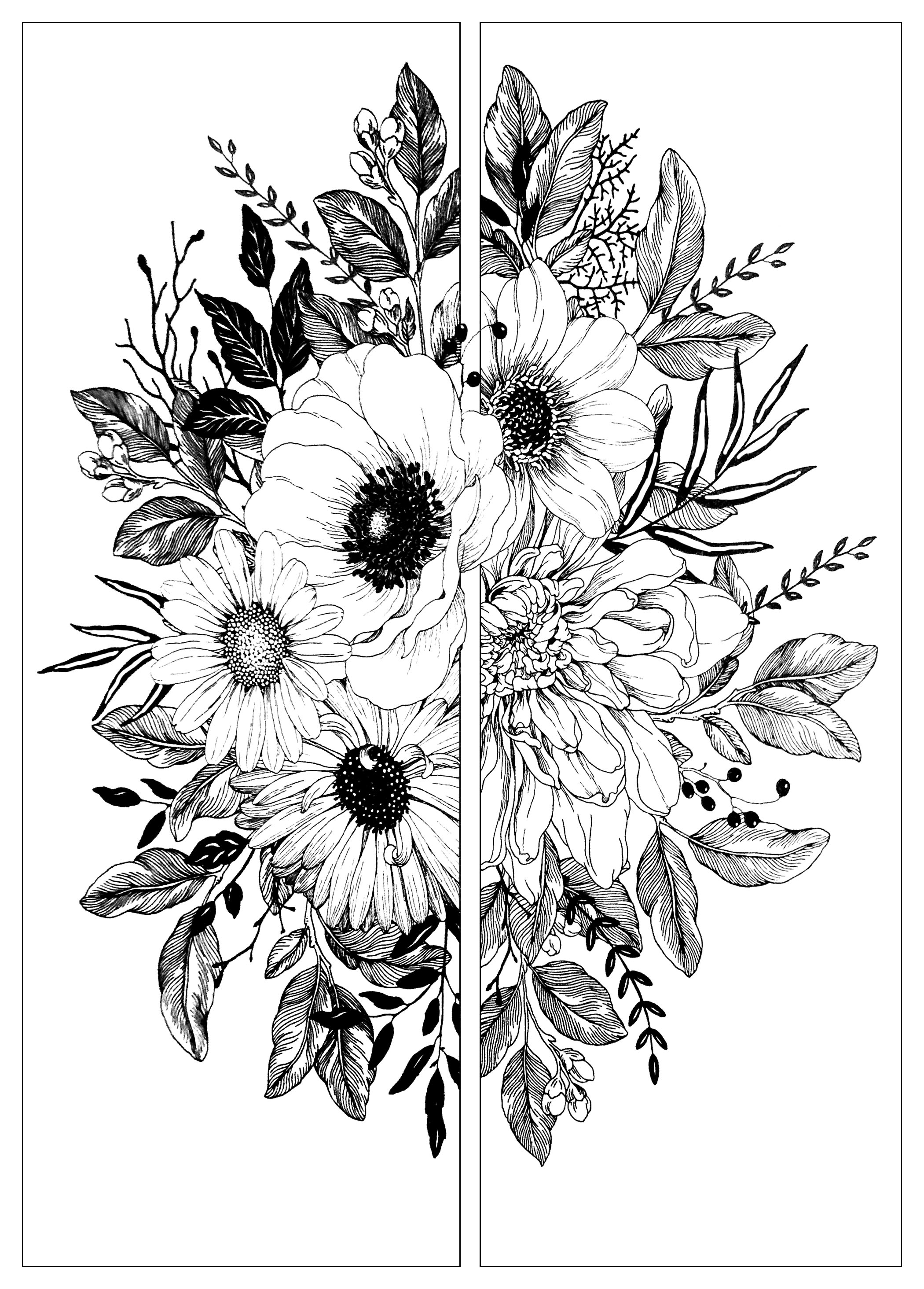 pictures of flowers to color flowers in two parts flowers adult coloring pages of flowers color pictures to