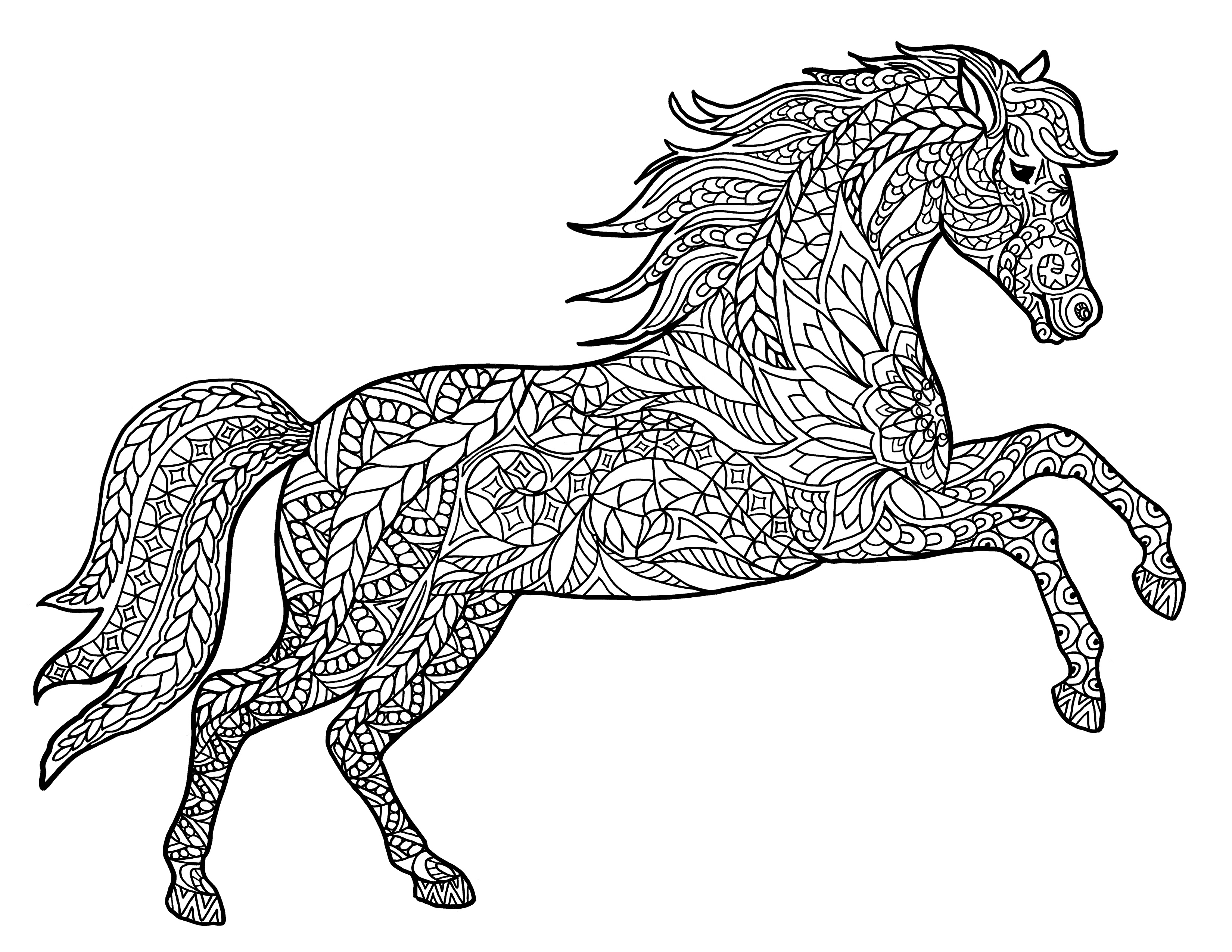 Pictures of horses to colour in