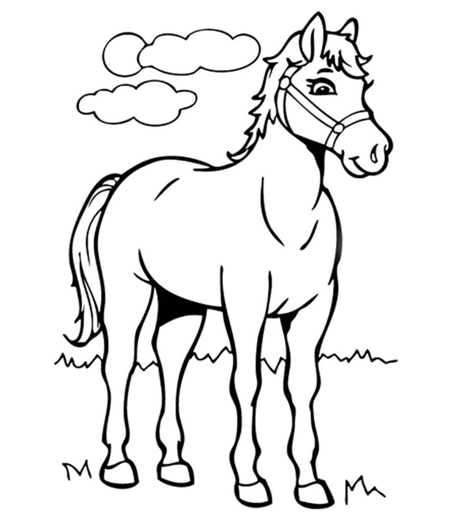 pictures of horses to colour in hand drawn horse for adult coloring page art therapy stock of in horses pictures colour to