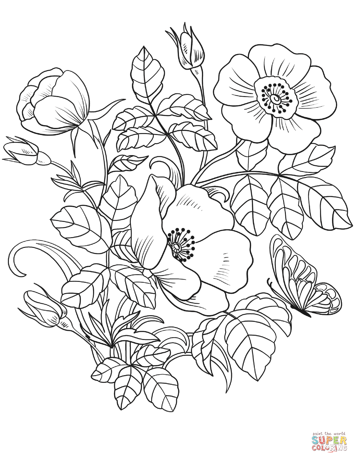 pictures to colour in of flowers free printable flower coloring pages for kids cool2bkids of flowers colour pictures in to