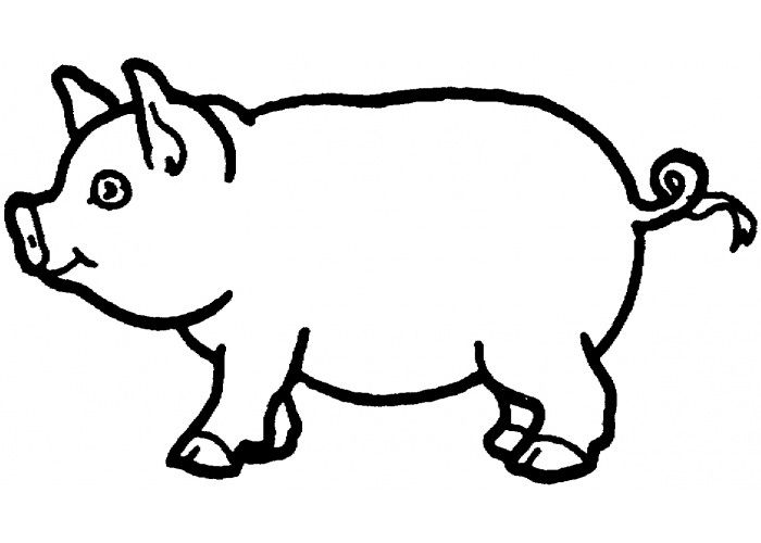 pig template for preschoolers 40 pig shape templates crafts colouring pages animal template for preschoolers pig