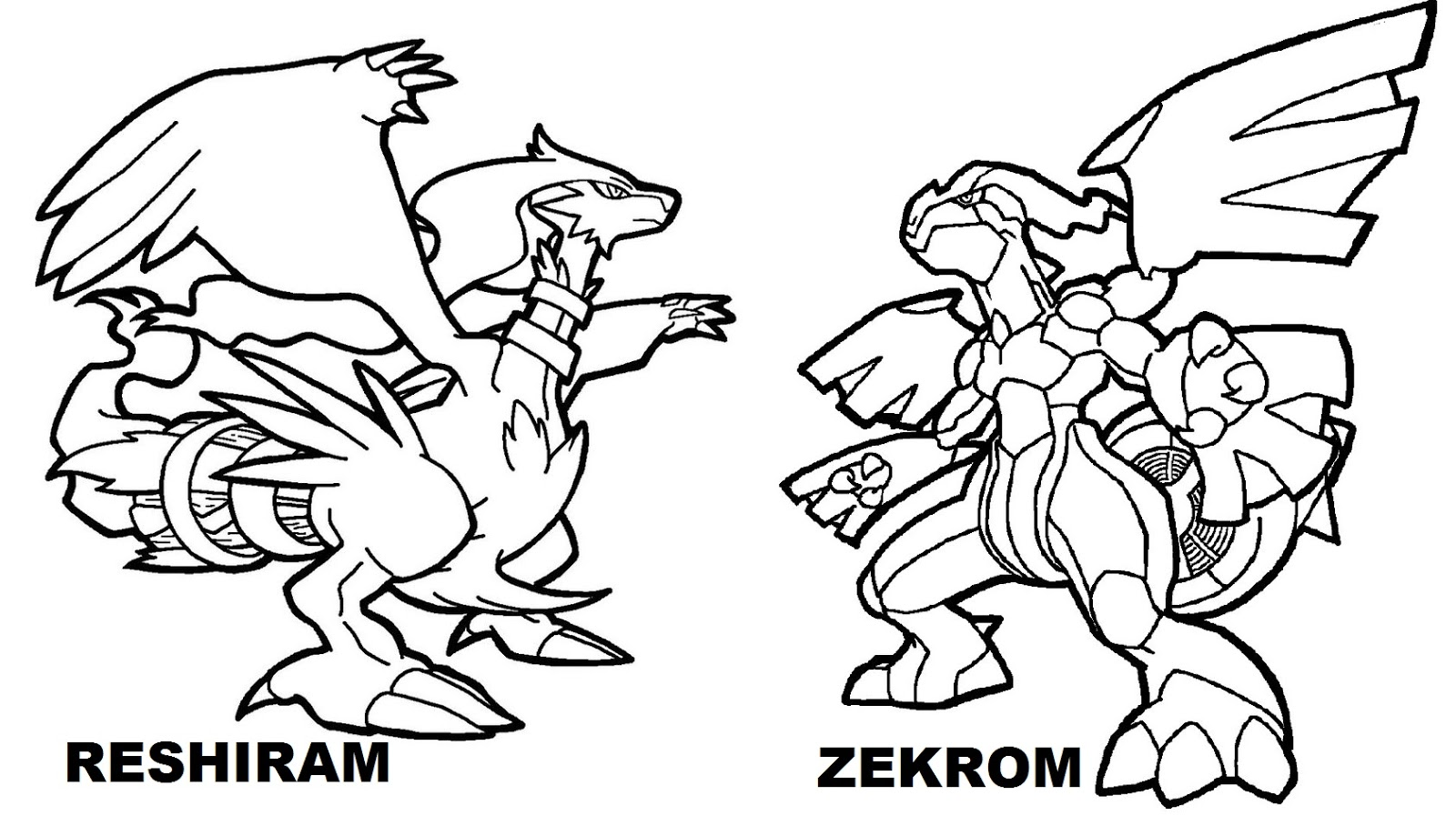 pokemon coloring pages cool pokemon coloring pages at getcoloringscom free coloring pokemon pages