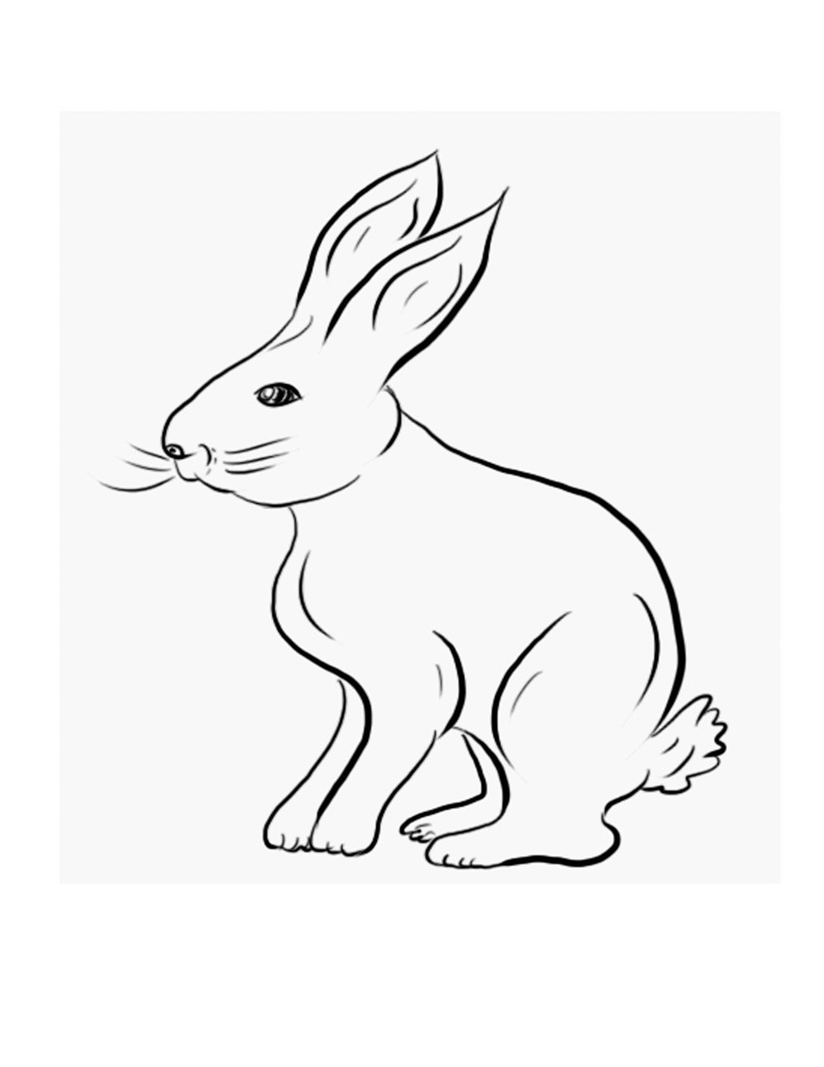 print bunny coloring pages 60 rabbit shape templates and crafts colouring pages pages print bunny coloring