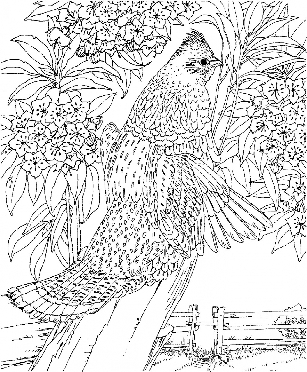 print out coloring pages get this difficult adult coloring pages to print out 67341 print pages coloring out