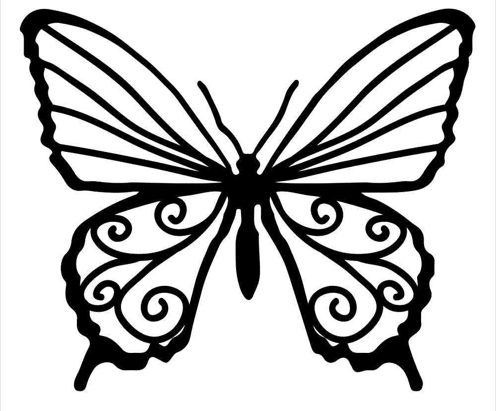 printable butterflies 10 butterfly coloring pages free premium templates butterflies printable