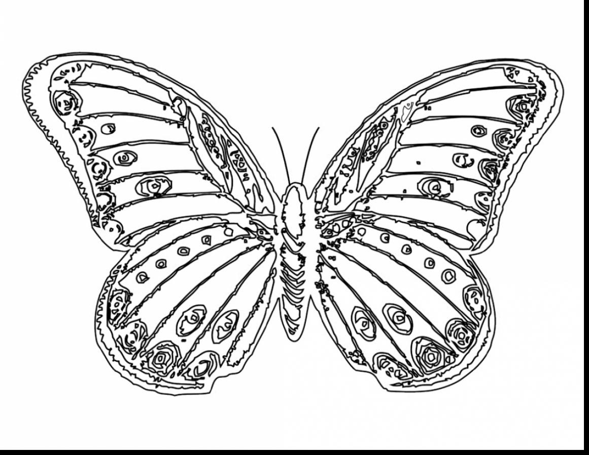 printable butterflies butterfly coloring pages printable butterflies