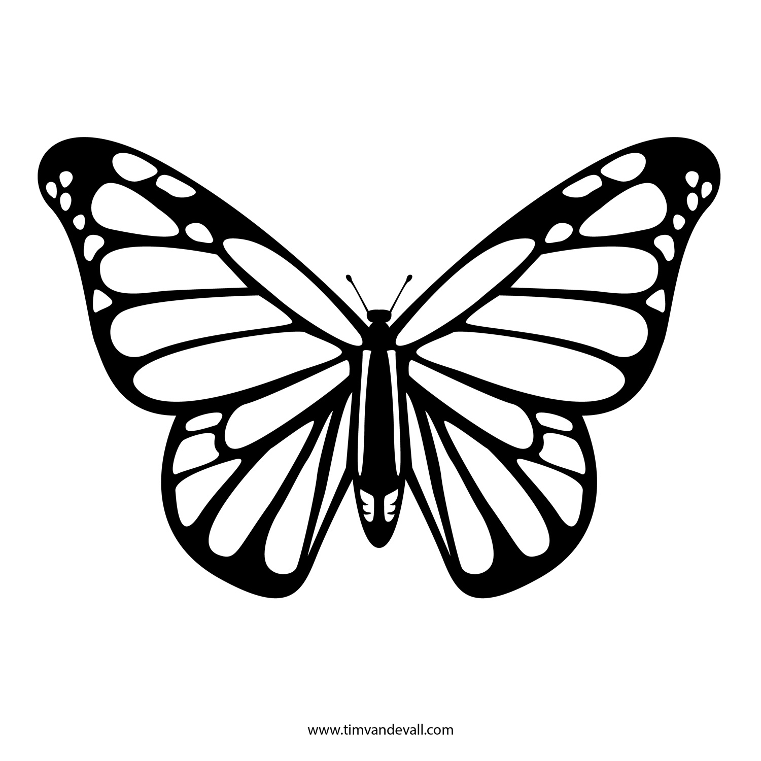 printable butterflies coloring pages butterfly free printable coloring pages butterflies printable