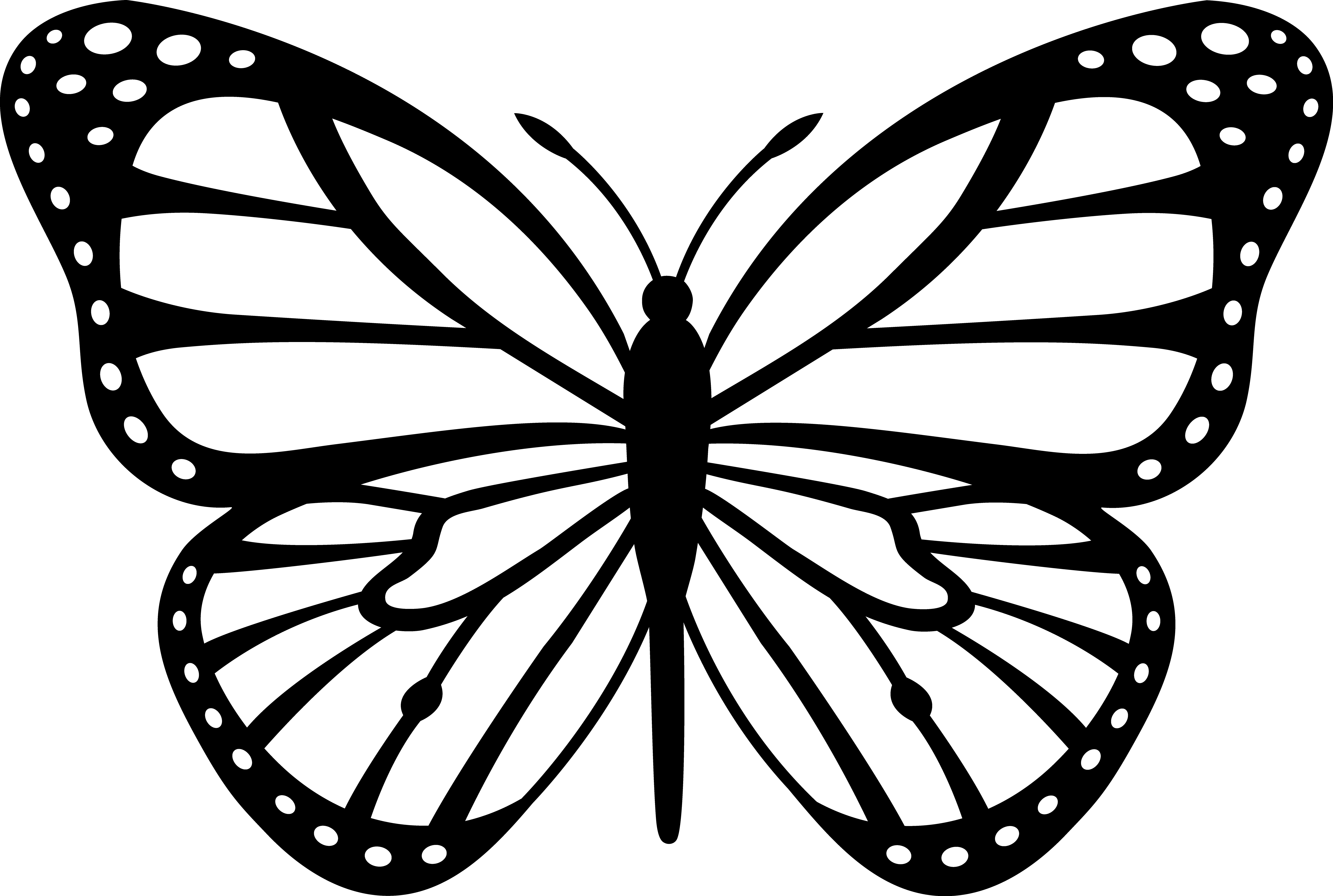 printable butterflies free printable butterfly coloring pages for kids printable butterflies 1 1