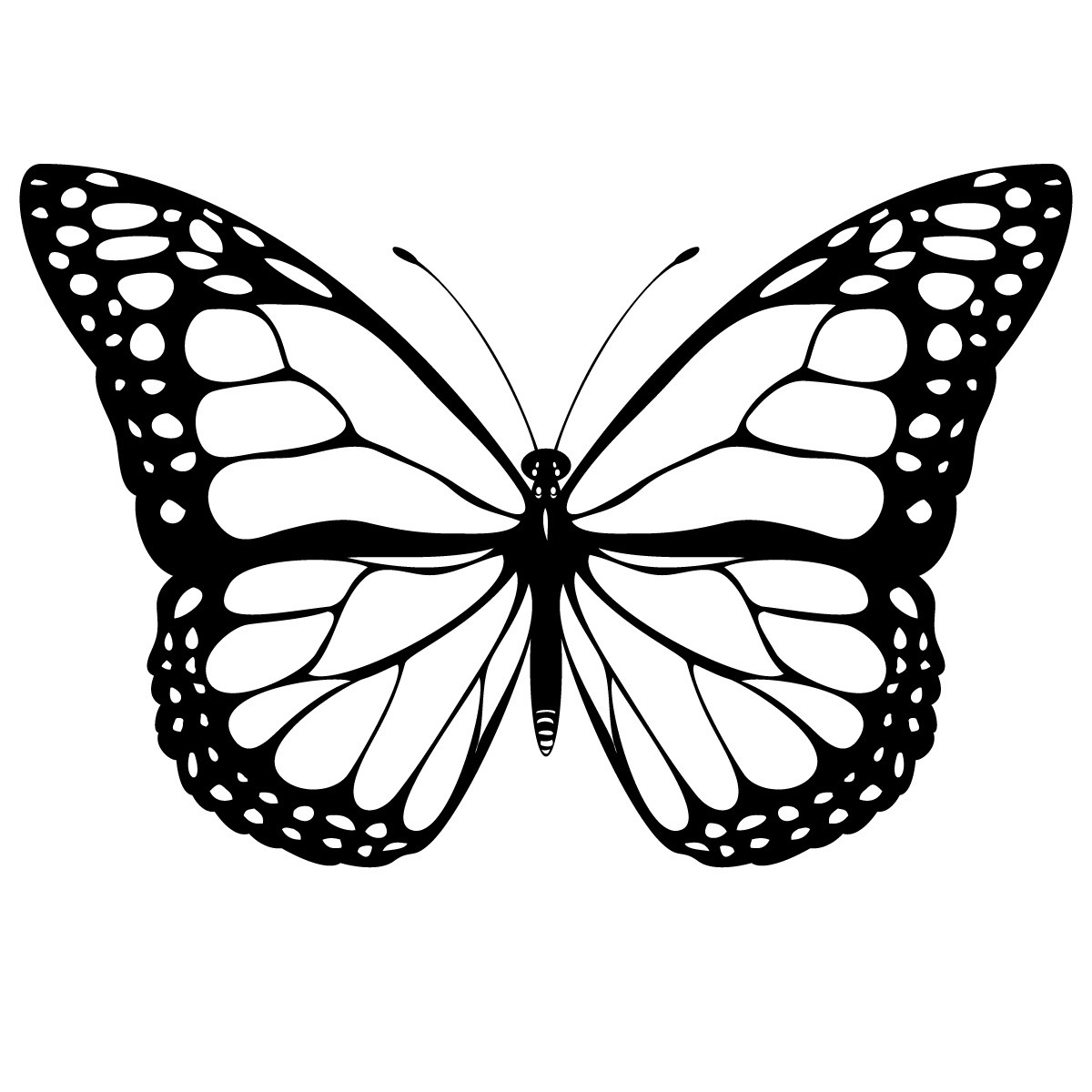 printable butterflies monarch butterfly coloring pages to print free coloring butterflies printable