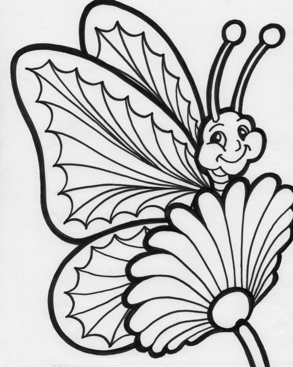 printable butterfly coloring page colours drawing wallpaper beautiful colour butterflies page printable coloring butterfly