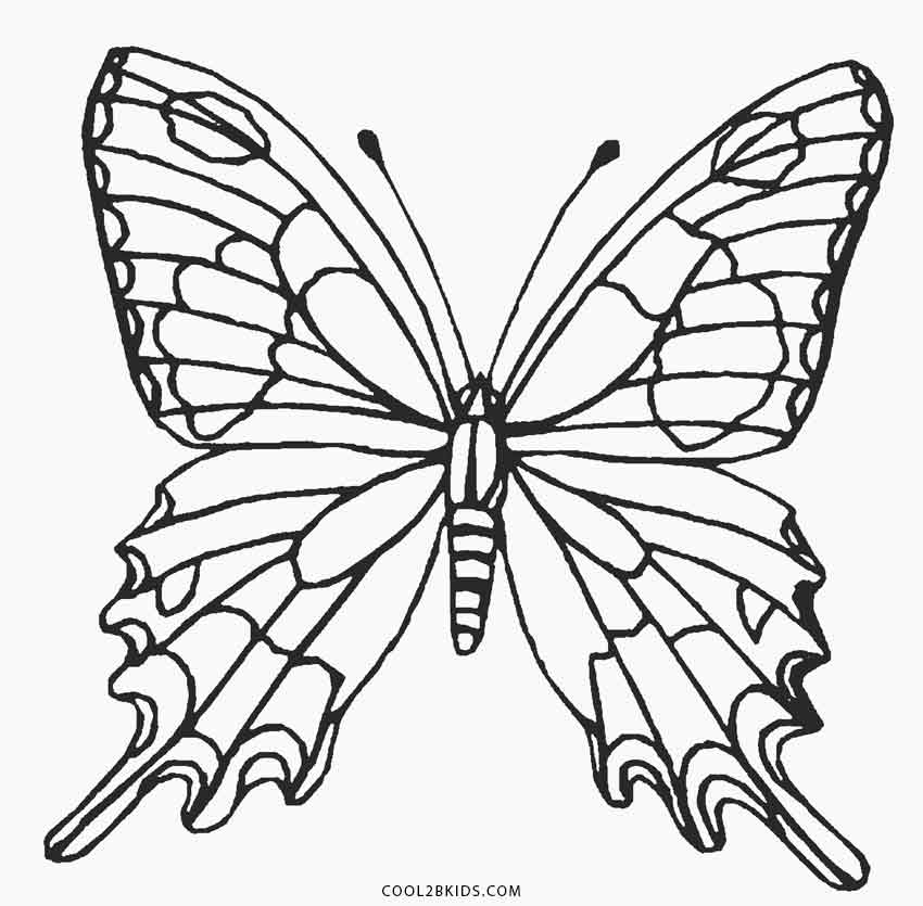 printable butterfly coloring page printable butterfly coloring pages for kids cool2bkids page coloring butterfly printable