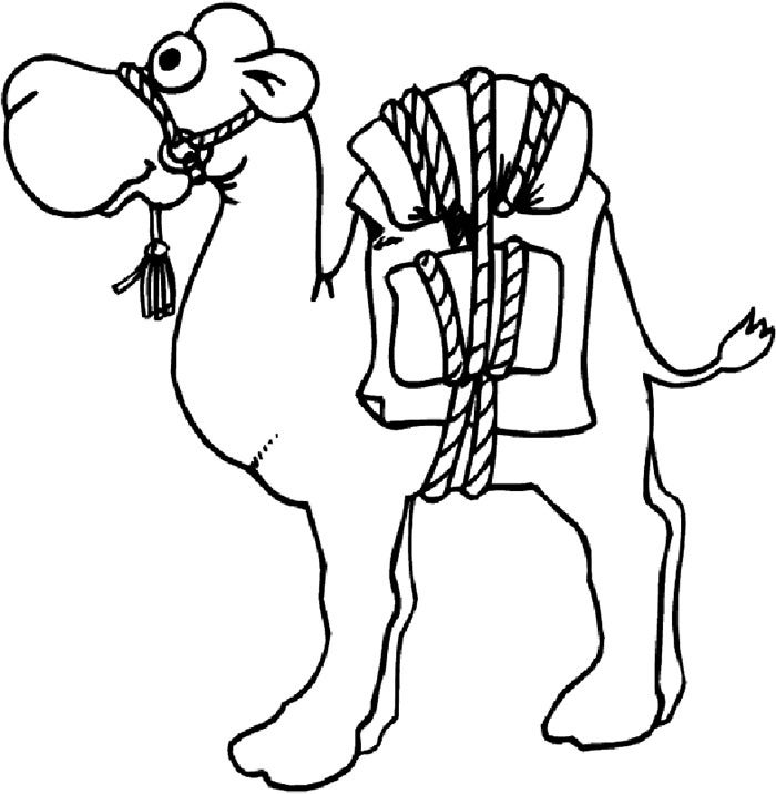 printable camel camel coloring pages for students preschool and kindergarten camel printable 1 1
