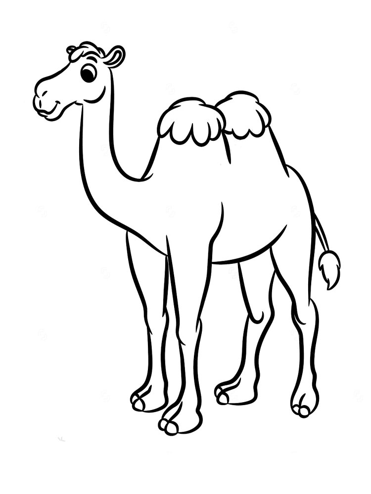 printable camel free camel coloring pages printable camel