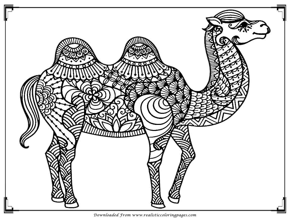 printable camel free camel coloring pages printable camel 1 1